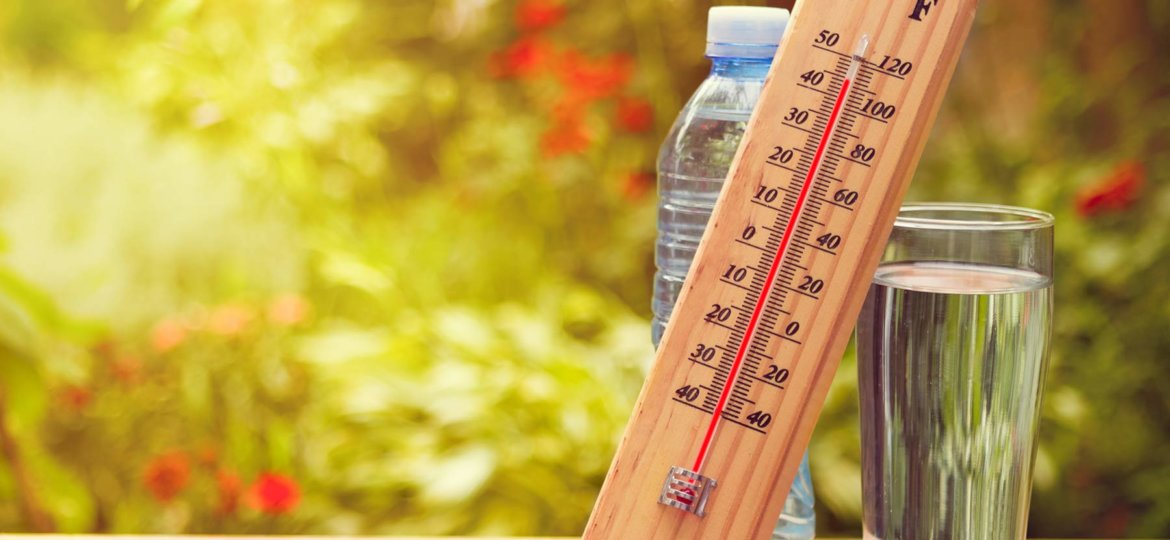 plan-canicule-reactive-exco-hesio